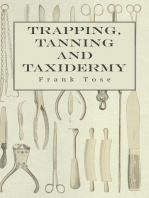 Trapping, Tanning and Taxidermy