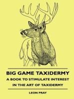 Big Game Taxidermy - A Book To Stimulate Interest In The Art Of Taxidermy