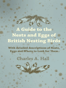 A Guide to the Nests and Eggs of British Nesting Birds - With Detailed Descriptions of Nests, Eggs, and Where to Look for Them