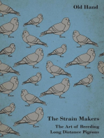 The Strain Makers - The Art of Breeding Long Distance Pigeons