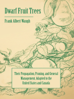 Dwarf Fruit Trees - Their Propagation, Pruning, and General Management, Adapted to the United States and Canada