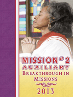 2013 Mission #2 Auxiliary Mission Guide