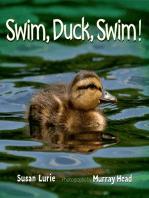 Swim, Duck, Swim!