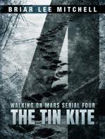 The Tin Kite