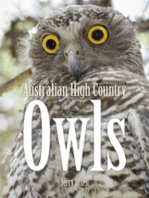 Australian High Country Owls