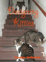Designing Kitties