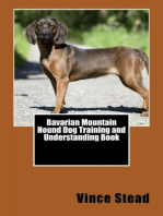 Bavarian Mountain Hound Dog Training and Understanding Book