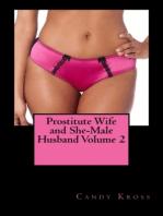 Prostitute Wife and She-Male Husband Volume 2