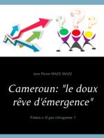 """Cameroun : """"le doux rêve d'émergence"""": Finira-t-il par s'évaporer ?"""