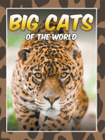Big Cats Of The World