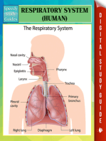 Respiratory System (Human) Speedy Study Guides