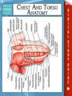 Chest And Torso Anatomy (Speedy Study Guide)