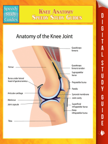 Knee Anatomy Speedy Study Guides