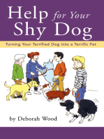 Help for Your Shy Dog
