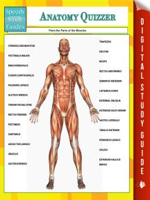 Anatomy Quizzer (Speedy Study Guides)