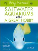 Bring Me Home! Saltwater Aquariums Make a Great Hobby