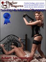 Saving His Mistress' Dungeon