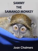 Sammy the Samango Monkey
