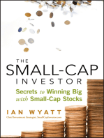 The Small-Cap Investor
