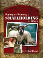 The Practical Guide to Buying and Running a Smallholding in Wales
