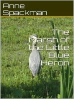 The Marsh of the Little Blue Heron