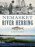 Nemasket River Herring