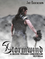 The Blood Wizard Chronicles Novella