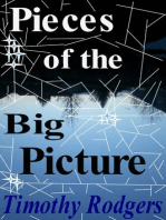 Pieces of the Big Picture
