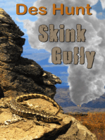 Skink Gully