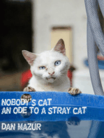 Nobody's Cat (An Ode to a Stray Cat)