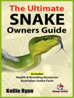 The Ultimate Snake Owners Guide