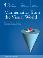 Mathematics from the Visual World (Transcript)