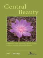Central Beauty