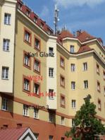 Wien wie es lebt
