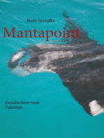 Mantapoint