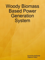 Woody Biomass Based Power Generation System