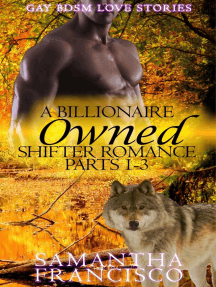 Owned: A Billionaire Shifter Romance 1-3: Gay BDSM Love Stories, #1