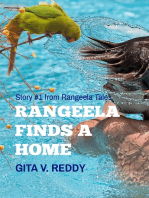 Rangeela Finds a Home -Story 1 in the Rangeela Tales Series