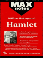 Literature review of a research on hamlet ?