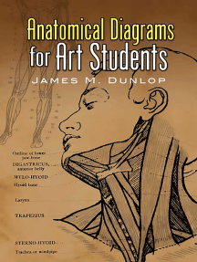 Anatomical Diagrams for Art Students