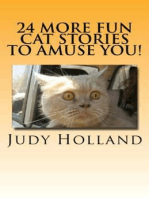 24 More Fun Cat Stories To Amuse You!