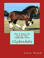 How to Raise and Care for Your Clydesdale Horse