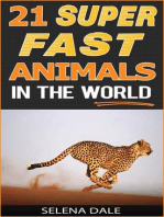 21 Super Fast Animals In The World