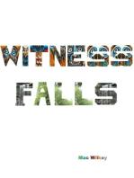 Witness Falls