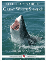 14 Fun Facts About Great White Sharks