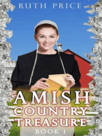 An Amish Country Treasure