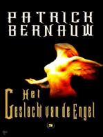 Het geslacht van de engel