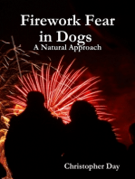 Firework Fear in Dogs