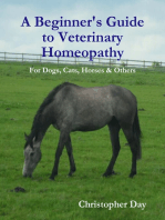 A Beginner's Guide to Veterinary Homeopathy