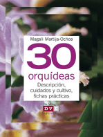 30 orquídeas